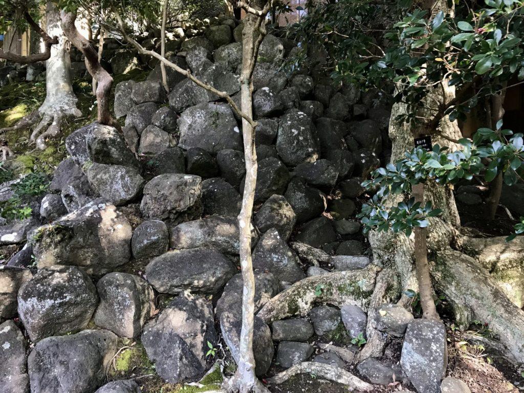 山本邸石垣玄関側