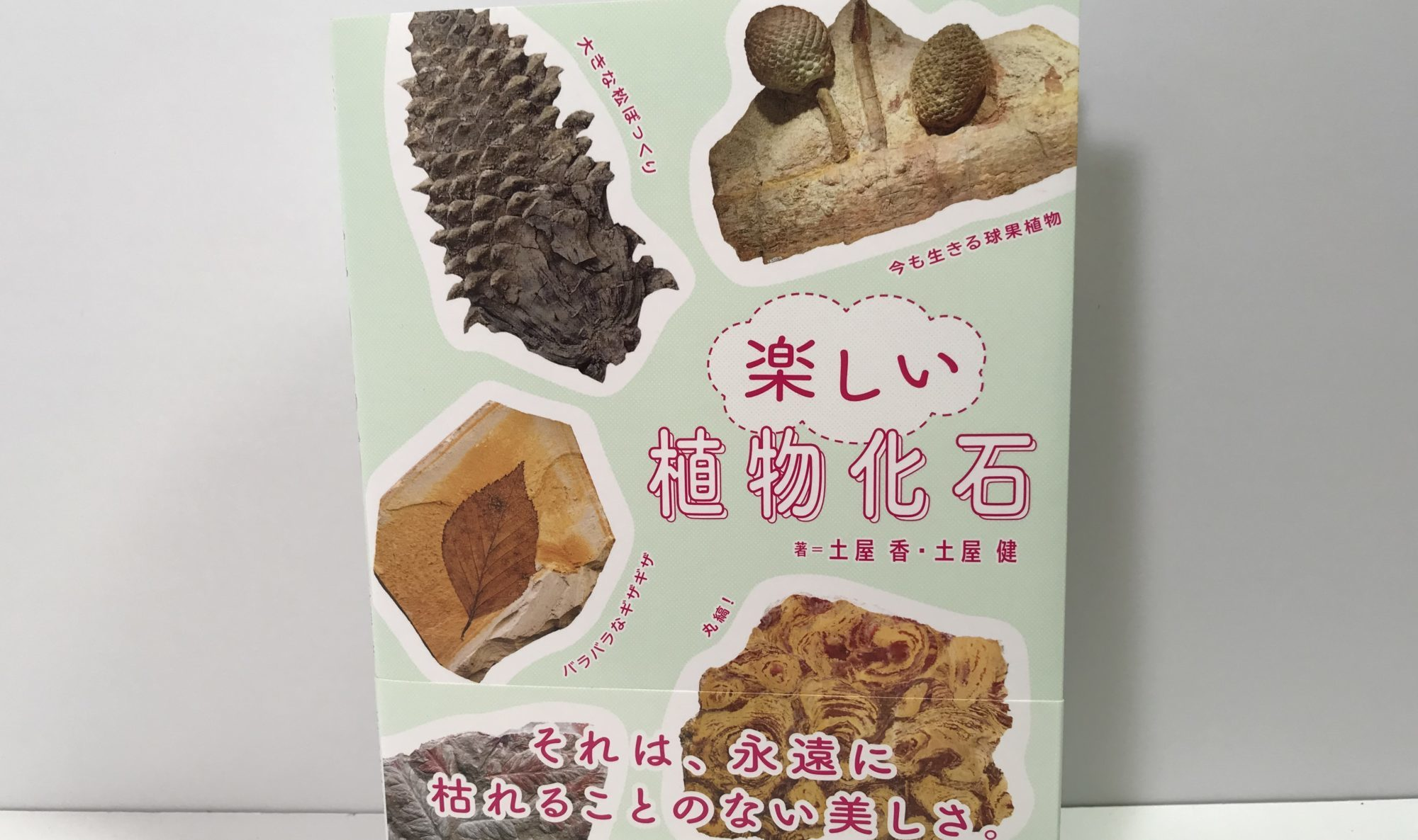 楽しい植物化石 本
