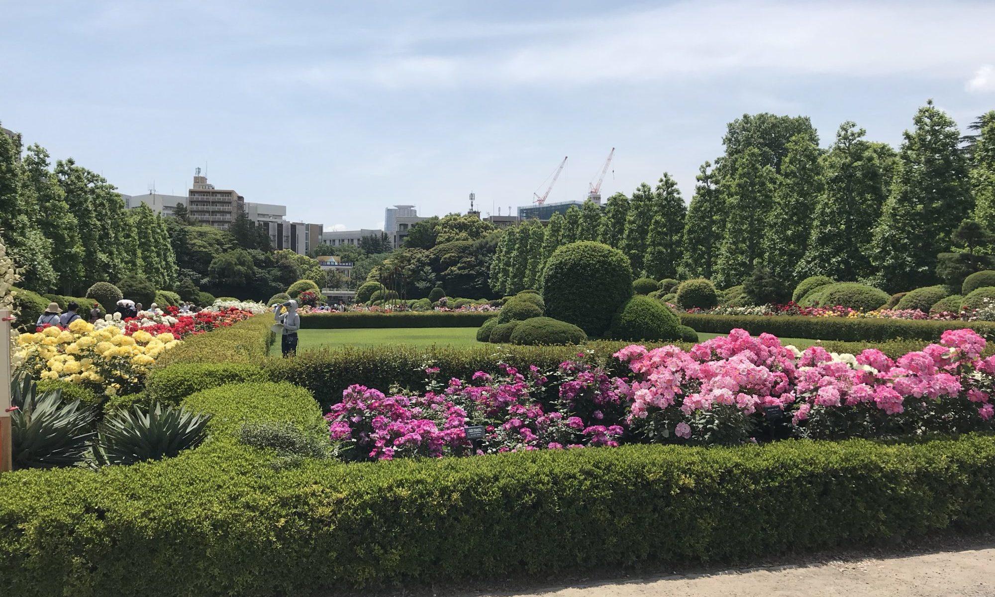 新宿御苑 バラ園