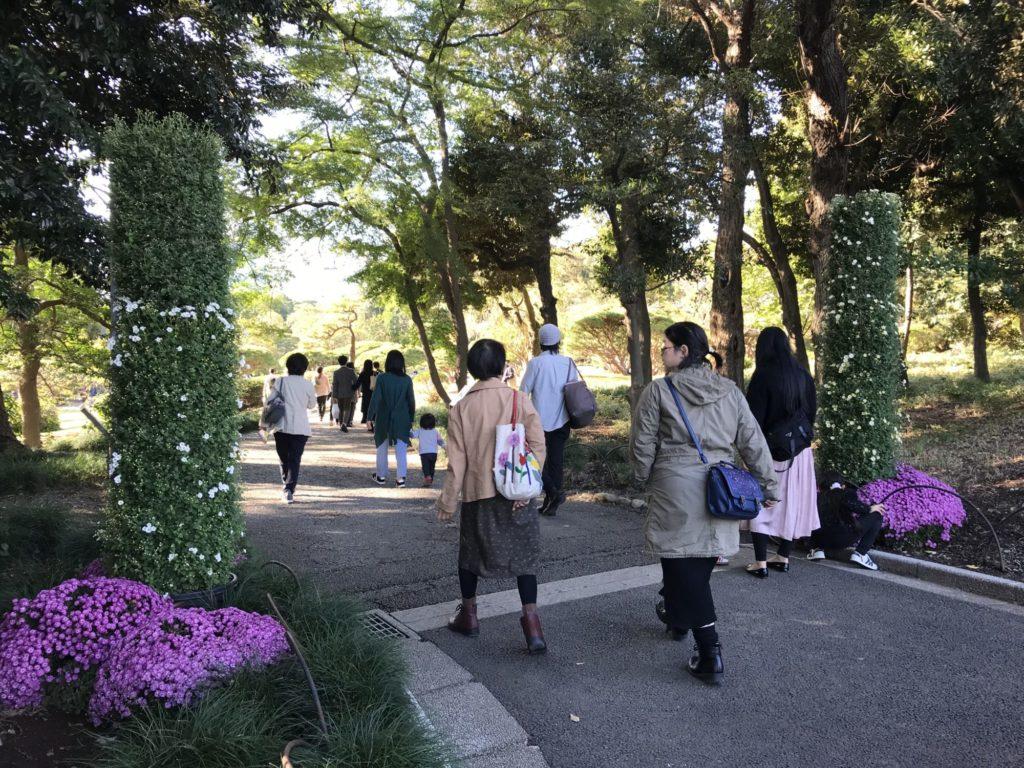 菊花壇展中央入口