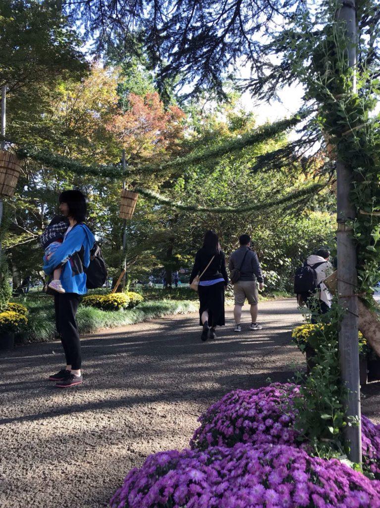 新宿門菊の花ゲート