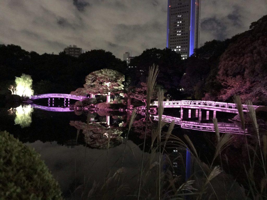 ライトアップ 新宿御苑