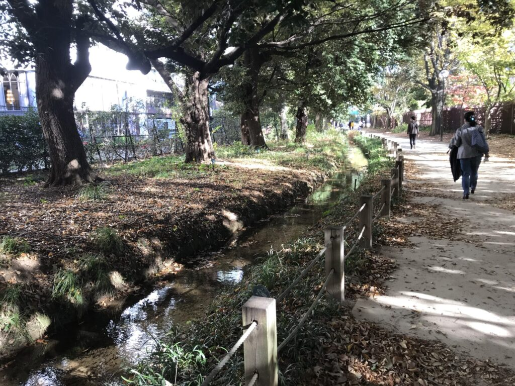 玉川上水散策路の流れ