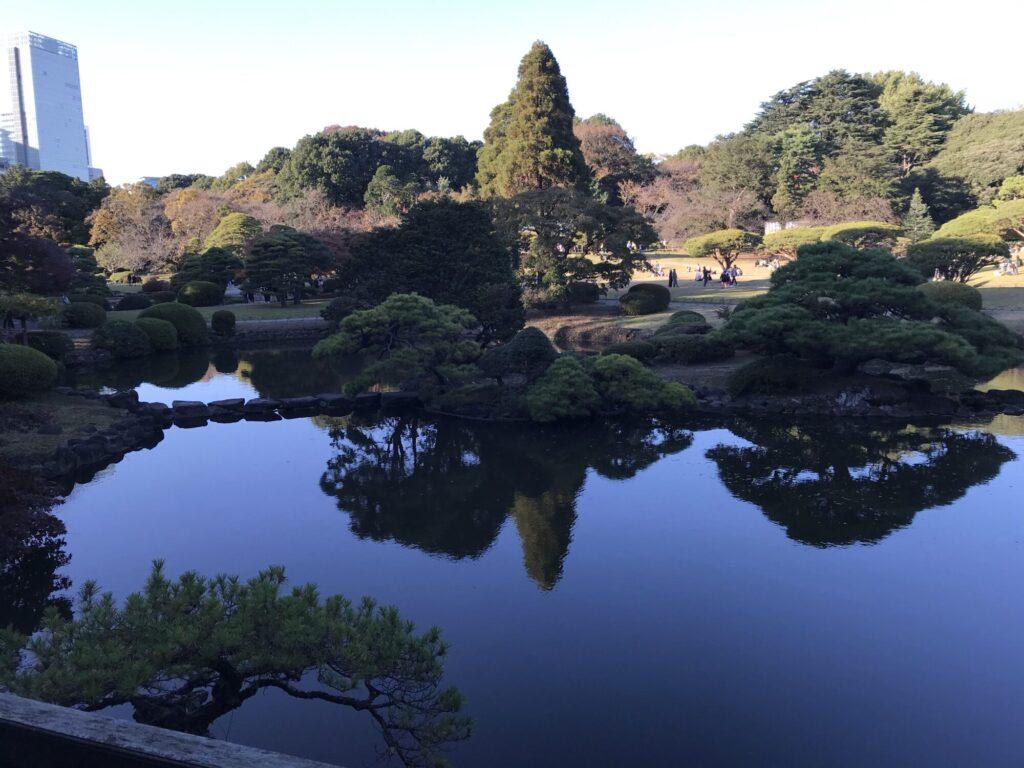 新宿御苑 中の池